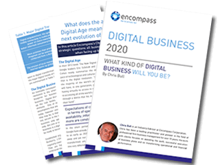 Digital Business 2020