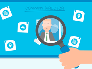company director search