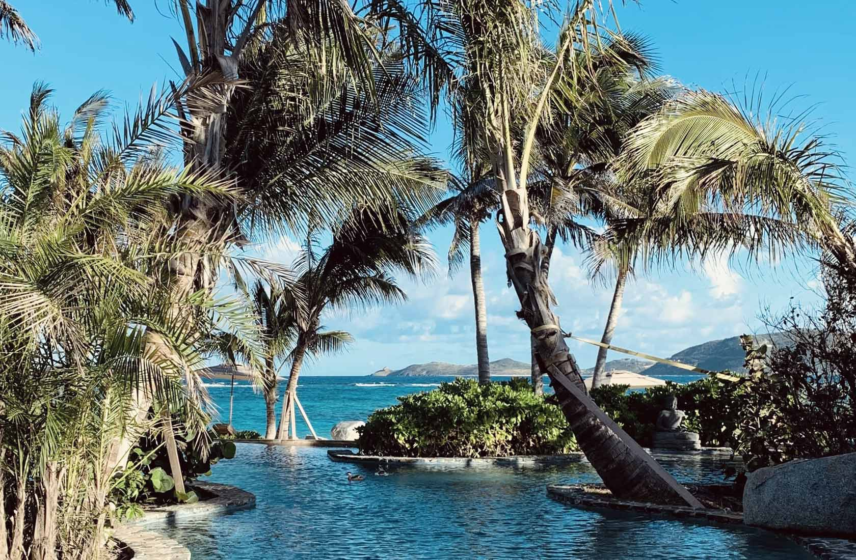 tax havens: safeguarding wealth or facilitating financial crime?